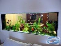 amplasarea-acvariului