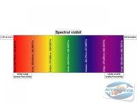 iluminarea-acvariului-tuburile-fluorescente
